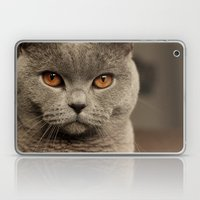Diesel, the cat - (close up)  Laptop & iPad Skin