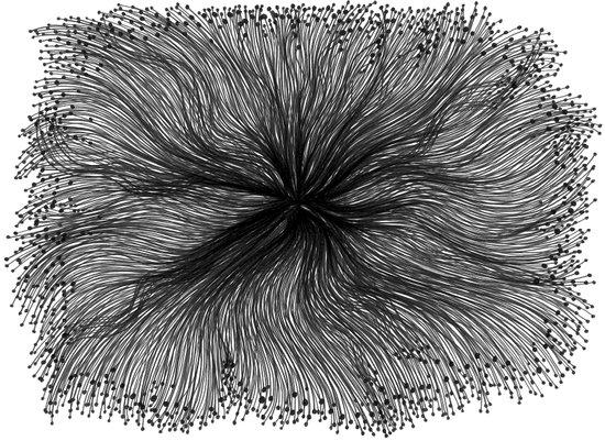 Jellyfish Large B&W Art Print
