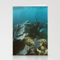 Mexican Caribbean Sealife Stationery Cards