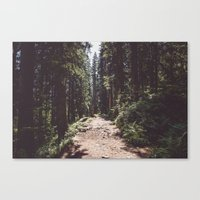 Entering the Wilderness Canvas Print