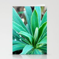 Bush Stationery Cards