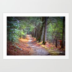 Secret Pathway Art Print