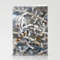 Iced Bush Stationery Cards