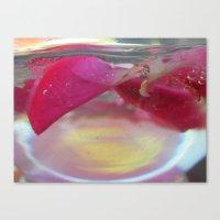 Rose Petals in Water Canvas Print
