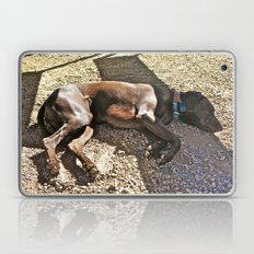 Sleepy Alaska Laptop & iPad Skin