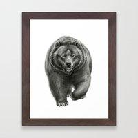 Brown Bear SK068 Framed Art Print