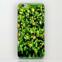 Water Lillies  iPhone & iPod Skin