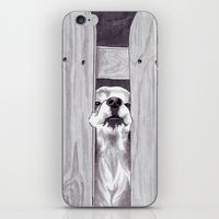Can't Quite Fit iPhone & iPod Skin