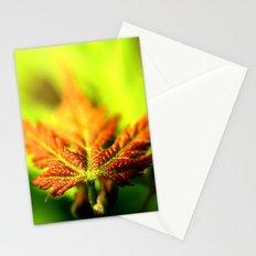 Red Leaf Lines Stationery Cards
