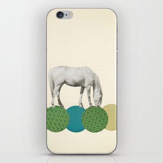 Graze iPhone & iPod Skin