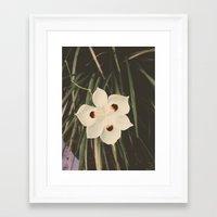 Little White Framed Art Print