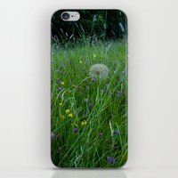 Field of flowers and Dandelions (2) iPhone & iPod Skin