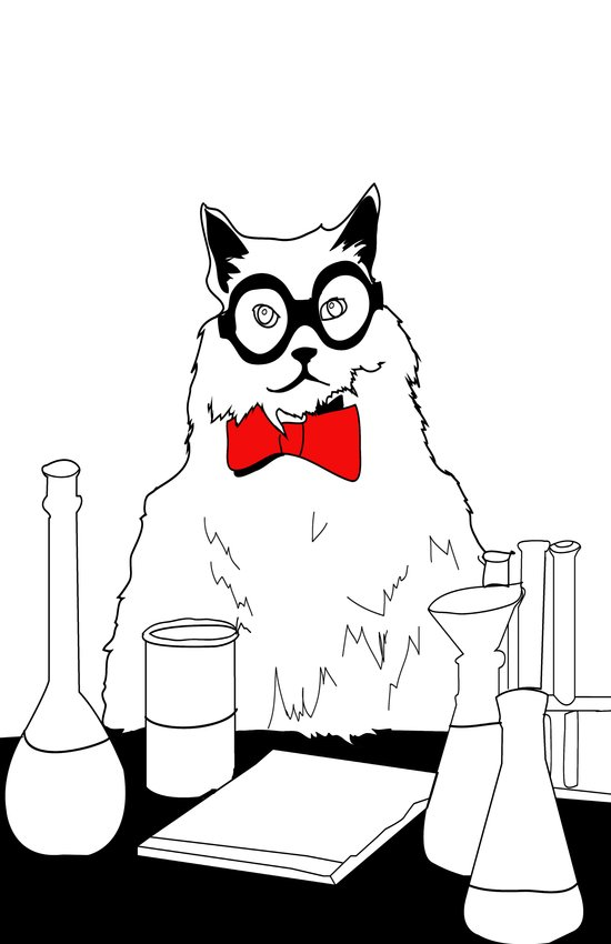 Chemistry Cat Stare Art Print