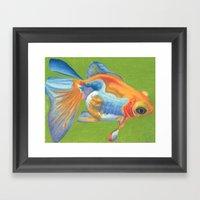 Telescope Eyed Goldfish Framed Art Print