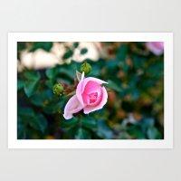 Pink Kiss Art Print
