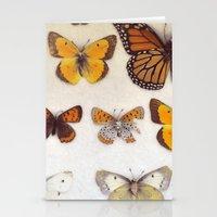 Specimin Stationery Cards