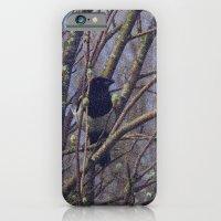 Bird Song iPhone 6 Slim Case