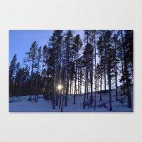 Light Through the Aspens Canvas Print