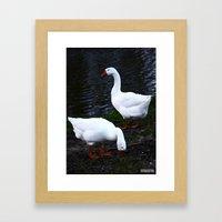 Geeze Framed Art Print