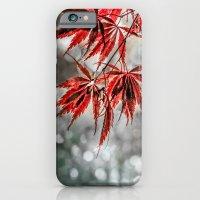 iPhone & iPod Case featuring Japanese Red Maple Leaves  by LudaNayvelt