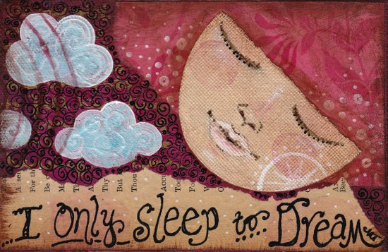 Sleep To Dream Canvas Print