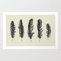 Lucky Five Feathers Art Print