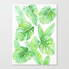 Philodendron Canvas Print