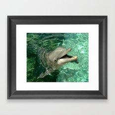 Smiling Dolphin Framed Art Print