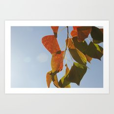 Glowing Leaves Art Print