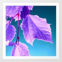 purple wine leaf Art Print