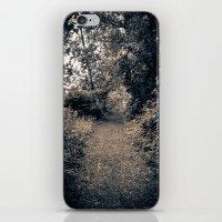 A Path iPhone & iPod Skin