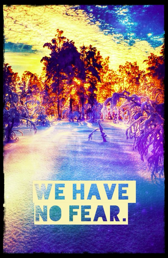 WE HAVE NO FEAR - for Iphone Art Print