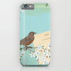 Sketchy Illustration  - Robin And Cherry Blossoms In Spring iPhone 6s Slim Case