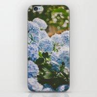 Little Blue iPhone & iPod Skin