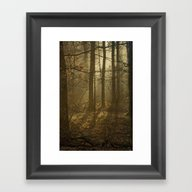 Into The Dark Woods Framed Art Print