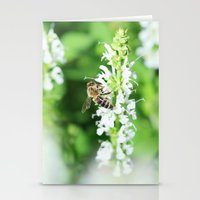 Climbing Bee Stationery Cards