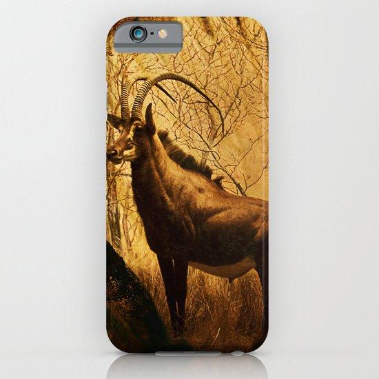Diorama :: Antelope iPhone & iPod Case