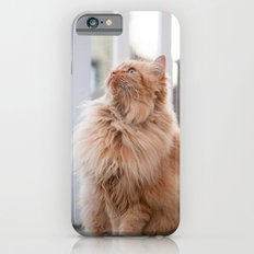 Here kitty iPhone 6 Slim Case