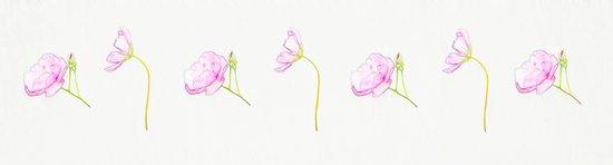 Sweet Blooms Art Print