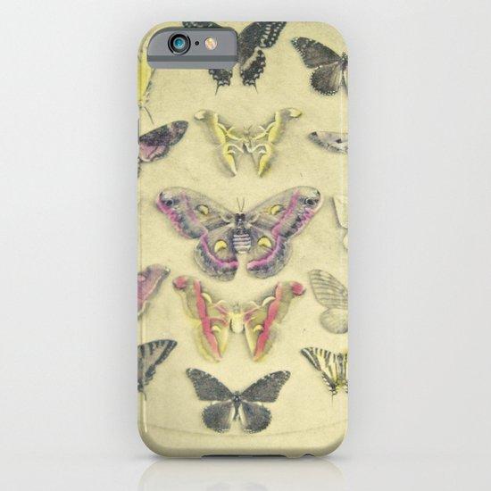 Butterflies and Moths iPhone & iPod Case