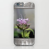 Bee Balm named Panorama Lavender iPhone 6 Slim Case