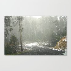From inside the Car Canvas Print