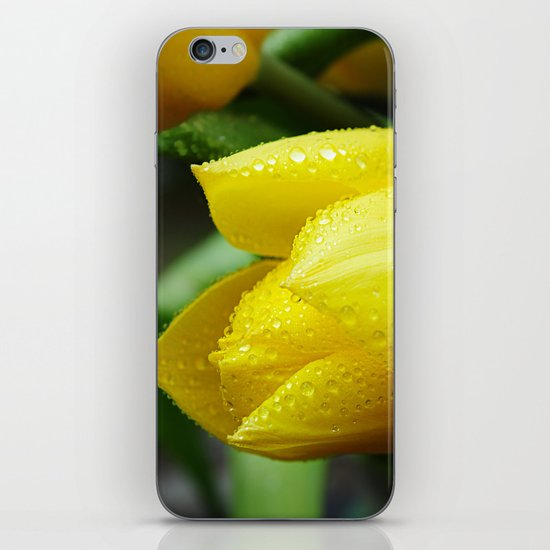 Yellow Tulip iPhone & iPod Skin
