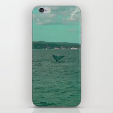 Young Humpback Waving in Turquoise iPhone & iPod Skin
