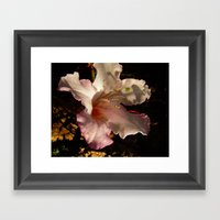 Rhododendron I Framed Art Print