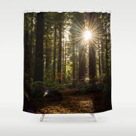 Shower Curtain featuring Redwood Forest by Michelle McConnell
