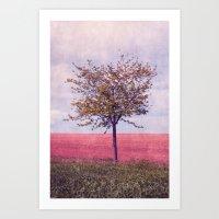 maio Art Print