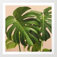Verdure #2 Art Print