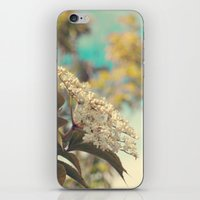 White flowers on blue sky (Retro flower photography) iPhone & iPod Skin