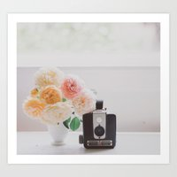 Roses And A Brownie Art Print